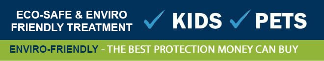 Bed Bugs Pest Control Perth